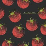 Red tomatoes seamless Stock Images