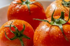 Red tomatoes with selective focus and crop fragment Royalty Free Stock Image