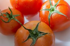 Red tomatoes with selective focus and crop fragment Royalty Free Stock Photo