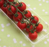 Red Tomatoes. Some red tomatoes in a plastic box royalty free stock images