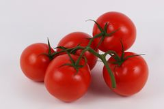 Red tomatoes in the studio stock photos