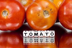 Red tomatoes with text Stock Images