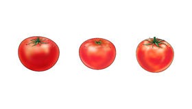 Red Tomatoes. Three Red Tomatoes on white background. Digital Illustration of vegetable food, cooking royalty free illustration