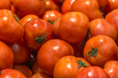 Red Tomatoes In Vegetable Market Display Stock Photography