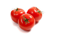 Red tomatoes on a vine Royalty Free Stock Photos