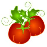 Red Tomatoes on Vine Clip Art stock photos