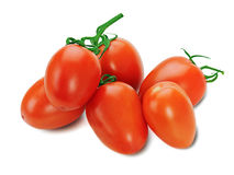 Red tomatoes on the vine  on white background Royalty Free Stock Photos