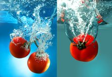 Red tomatoes in water Royalty Free Stock Photos