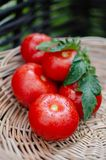 Ripe tomatoes are in a wicker basket stock photo