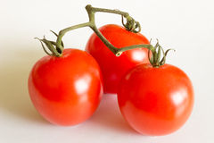 Red tomatoes. On white background Stock Images