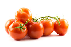 Red tomatoes on a white background.  stock photos