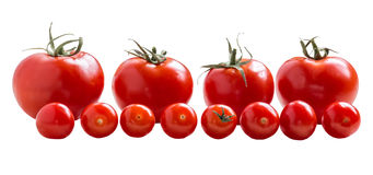 Red tomatoes on a white background. Red tomatoes and cherry tomatoes isolated on white background royalty free stock photos