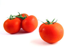 Red tomatoes on white background II. Isolated still of tomatoes with focused one right (slight over-exposure intended Royalty Free Stock Photos