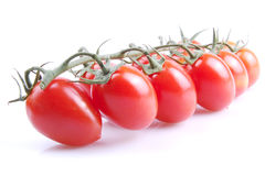 Red tomatos Stock Images
