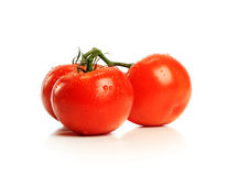 Red Tomatos Royalty Free Stock Photography