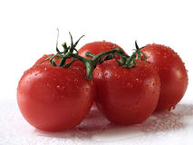 Red tomatos. With drops of water Stock Photography