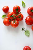 Red tomatos branch on white boards Stock Image