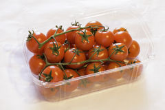 Red Tomatos Stock Photography