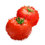 Red tomatos  illustration  of blots Royalty Free Stock Images