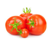 Red tomatos isolated Stock Photos