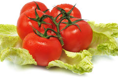 Red tomatos with leaves cabbage Royalty Free Stock Photos