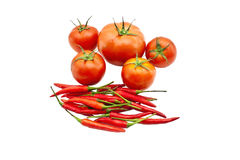 Red tomatos and red chilies. On white background Stock Photography