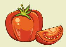 Red tomatos.Vector fresh vegetable isolated illust. Ration for design Stock Image