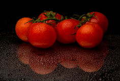 Red tomatos in water drop. Red tomatos with water drop on black Stock Image