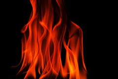 The red tongues of fire, flames on black. Close view on wall of fire with tonques of fire isolated black.Horizontal view Royalty Free Stock Image