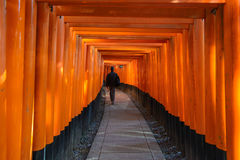 Red tori gate at Fushimi Inari Shrine in Kyoto Royalty Free Stock Photography