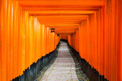 Red Tori Gate at Fushimi Inari Shrine in Kyoto, Japan. Stock Images