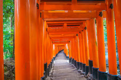 .Red Tori Gate at Fushimi Inari Shrine Temple in Kyoto, Japan Stock Photo