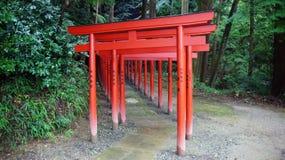 Red Tori row in Kyomizudera temple Matsue Royalty Free Stock Photos