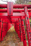 Red torii are common in Japan stock photo