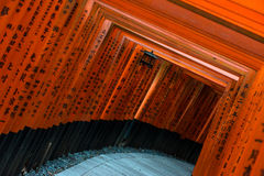 Red Torii at Fushimi Inari-taisha shrine in Kyoto Royalty Free Stock Photo