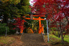 Red Torii gate to chureito pagoda Royalty Free Stock Images