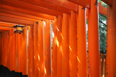 Red Torii gate Royalty Free Stock Image