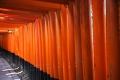 Red Torii gate Royalty Free Stock Photography