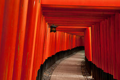 Red Torii gates at Fushimi Inari Shrine Royalty Free Stock Photo