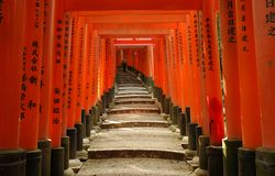 Red torii gates and lantern. Path through red torii gates with inscriptions at Fushimi Inari Shrine, Kyoto, Japan Royalty Free Stock Photos
