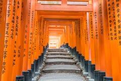 the red torii gates walkway at fushimi inari taisha shrine in Ky Royalty Free Stock Photos