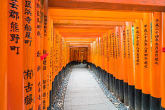 the red torii gates walkway at fushimi inari taisha shrine in Ky Royalty Free Stock Photos