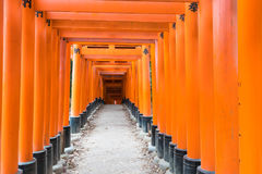 the red torii gates walkway at fushimi inari taisha shrine in Ky Stock Images