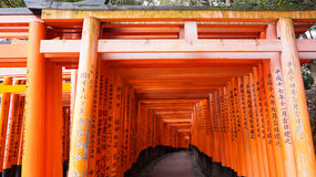 Red torii shrine at Fushimi Inari temple, Kyoto Japan Stock Image