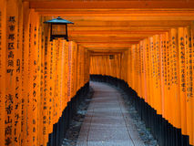 Red Torri Gates of Fushimi Inari Taisha. The famous red gates of Fushimi Inari Taisha shrine in Tokyo, Japan Stock Photo