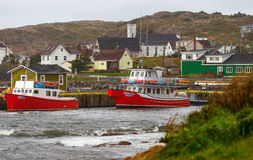 Red tour boats and houses in Twillingate Royalty Free Stock Image