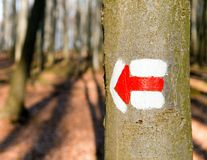 Red tourist or hiking trail signs symbols on tree tree Stock Photo
