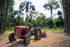 A Red Tractor in the farmland Royalty Free Stock Image