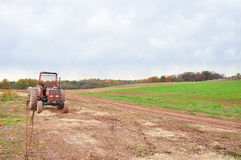 Red tractor in the field. With tree and sky in the background Stock Photography