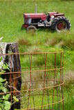 Red tractor. A red tractor sits in a field of green grass Royalty Free Stock Photography